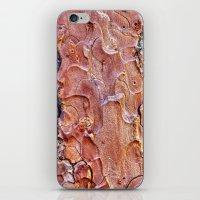 bark abstract iPhone & iPod Skin