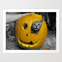 Halloween-Figgy Cat Art Print