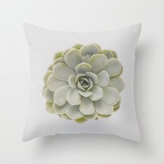 succulent 01  Throw Pillow
