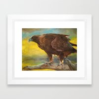 Golden Eagle (Aquila chrysaetos) Framed Art Print
