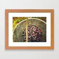 Berry Picking - Summer Blueberries Framed Art Print