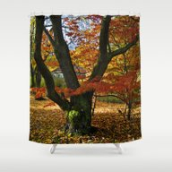 Red Autumnal Leaves Shower Curtain