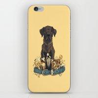 Dogs1 iPhone & iPod Skin