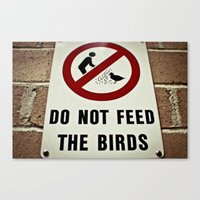 Don't feed the birds Canvas Print