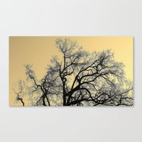 Exhaling Wood Canvas Print