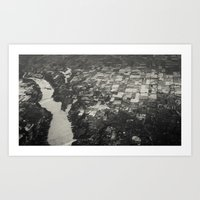 river from above Art Print