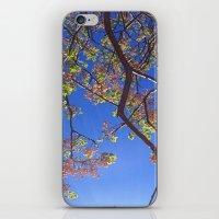 JAPAN mood iPhone & iPod Skin