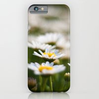 iPhone & iPod Case featuring Daisy Field by Katie Kirkland Photography