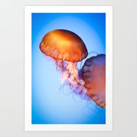 Large Jellyfish Art Print