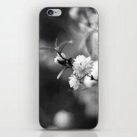 Flowering Almond In Blac… iPhone & iPod Skin