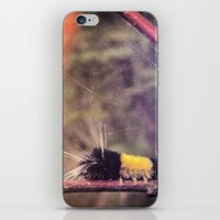 Little Bug iPhone & iPod Skin