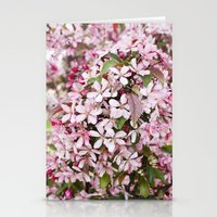 Apricot blossoms Stationery Cards