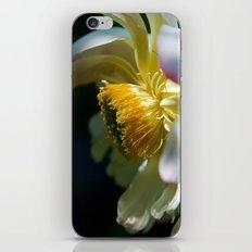 Lotus - 104 iPhone & iPod Skin