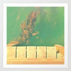 The California Summer Series // Seaweed Art Print