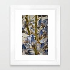 iced wisteria Framed Art Print