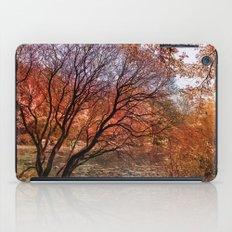 Mad colors of Autumn iPad Case