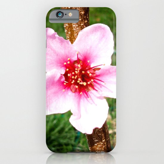 Peach Blossom iPhone & iPod Case