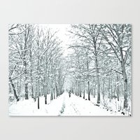 winter symphony Canvas Print