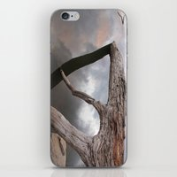Suspended Reflection iPhone & iPod Skin