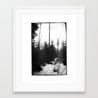NORWEGIAN FOREST X Framed Art Print