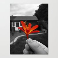 Held Flower Canvas Print