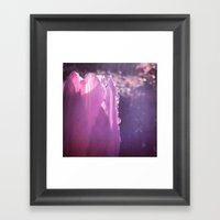 Tulip With Water Droplet… Framed Art Print