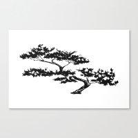 Bonzai Tree On White Bac… Canvas Print