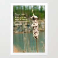 Inspiration Of A Cattail Art Print