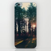 The Trees And The Sun iPhone & iPod Skin