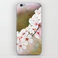 Pretty Cherry Blossom Flowers iPhone & iPod Skin