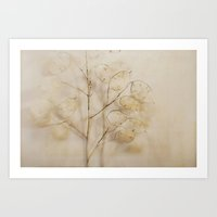 Lunaria Art Print