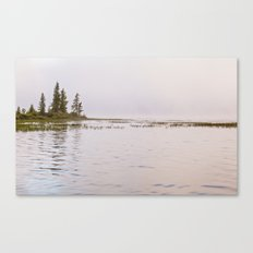 trees in pink Canvas Print
