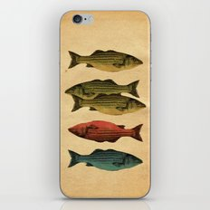 One fish Two fish iPhone & iPod Skin