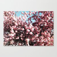 BLOSSOM GRAB Canvas Print