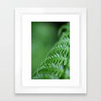 Fern Details Framed Art Print