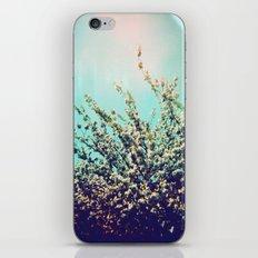 Holga Flowers I  iPhone & iPod Skin