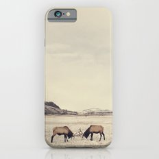 Sparring Elk In Wyoming … iPhone 6 Slim Case