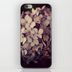 Summertime Blues iPhone & iPod Skin