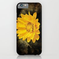 Beautiful Sunflower with Dark Brown Background iPhone 6 Slim Case