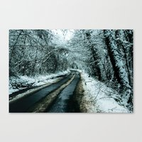 Road To Snowwhere Canvas Print