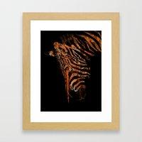 Zebra Mood Framed Art Print