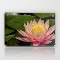Flower Series 3 Laptop & iPad Skin