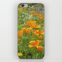 california poppy VIII iPhone & iPod Skin