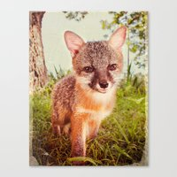 So Foxy! Canvas Print