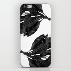 Evil Butterfly iPhone & iPod Skin