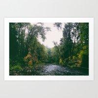 Fall River Art Print