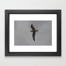 Full Flight Framed Art Print