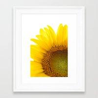 Sunflower Detail - Yello… Framed Art Print