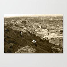 Eagles at High Noon Canvas Print
