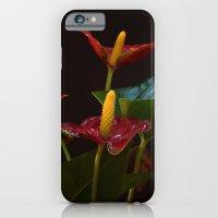 Flamingo Flowers iPhone 6 Slim Case